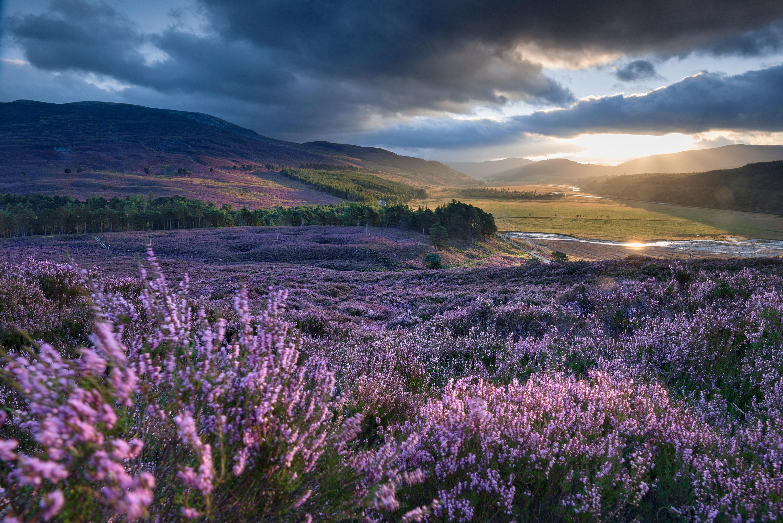 moors-scotland