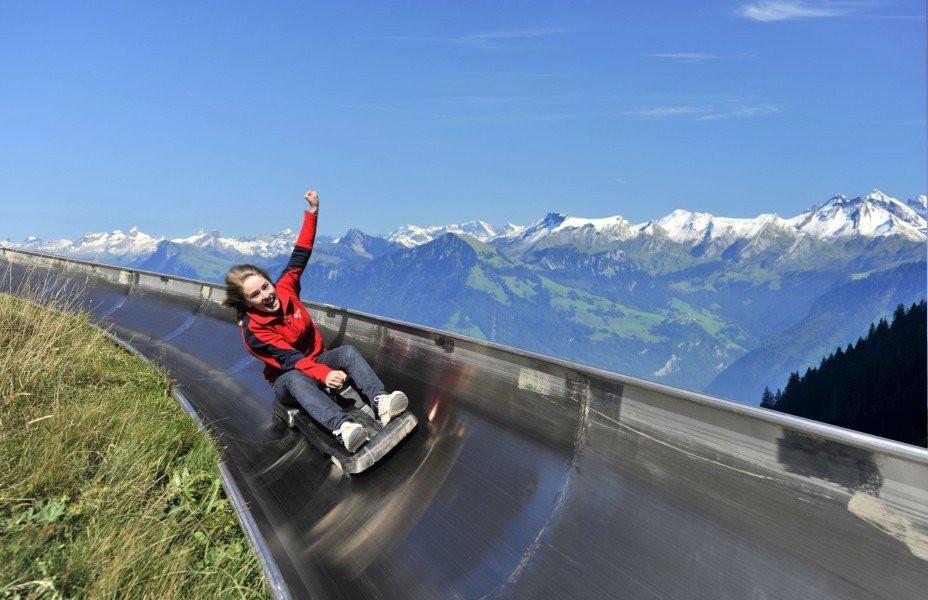 sight_alpine-slide-fraekigaudi-pilatus-hergiswil_n68992-66347-1_l